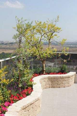 גדר לתיחום ולשתילת צמחים